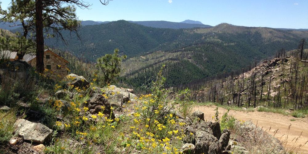 Fourmile Canyon