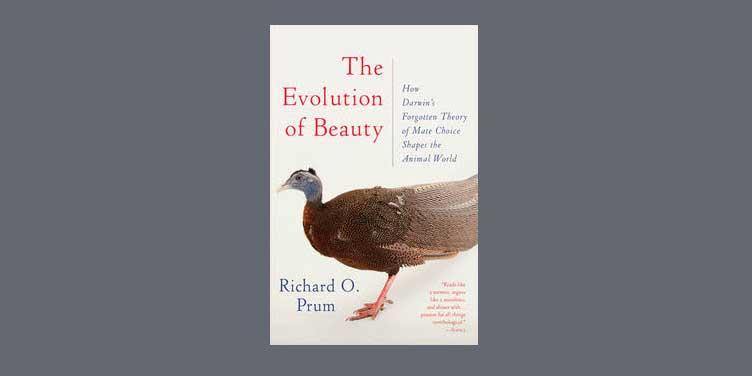 richard o prum evolution of beauty