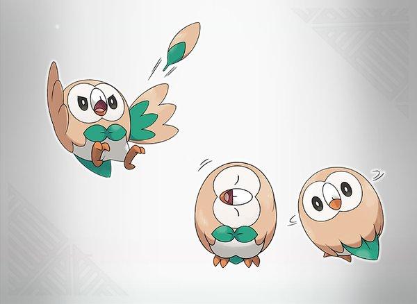 Starter Pokémon Bauz