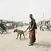 nigeria_hyenas2.jpg