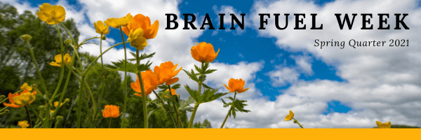 """Spring flowers in front of a blue sky with the text """"Brain Fuel Week"""" in the top rightcorner"""