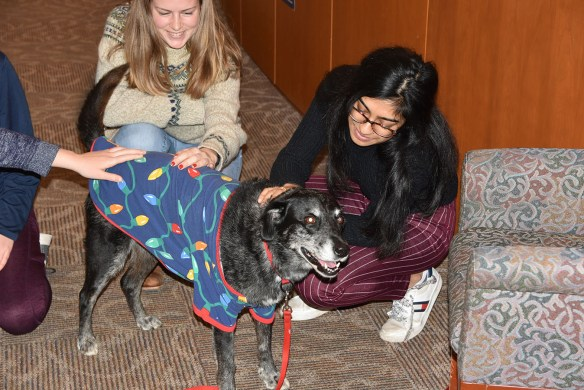 Ruth enjoying some hands-on therapy from students