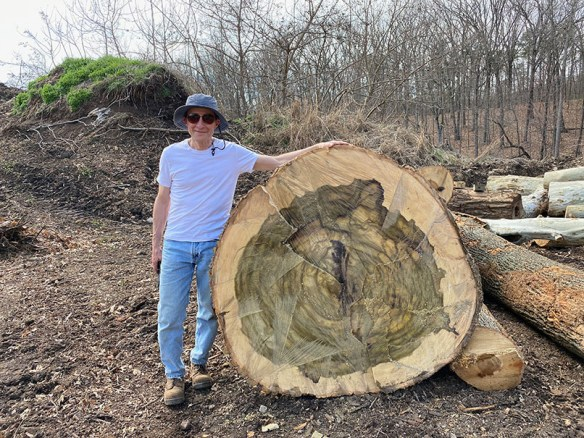 UVA Architectural Conservator Mark Kutney standing with his arm on top of the butt end of tulip poplar log