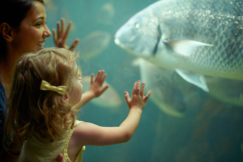 Shot of a mother and daughter admiring the fish at the aquarium
