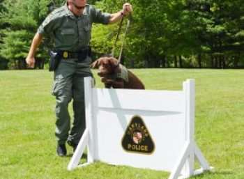Photo of officer and K-9