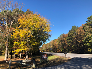 Assateague State Park Corridor
