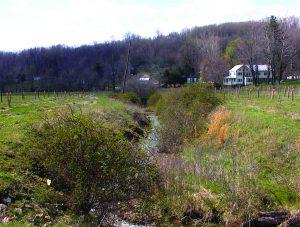 Photo of unbuffered stream