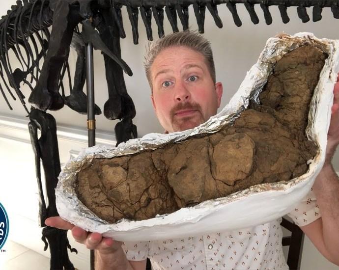 Largest dinosaur poop - Guinness World Records