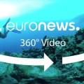 Προστασία της φύσης: Ποια είναι η ευρωπαϊκή στρατηγική;
