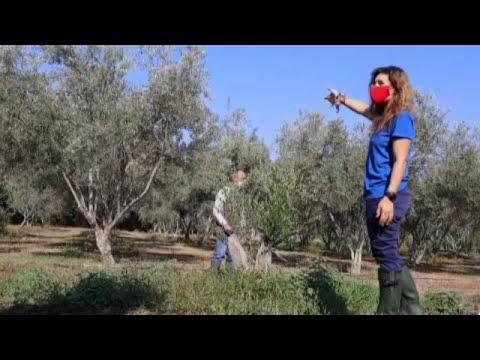 Η κλιματική αλλαγή απειλεί την Κύπρο