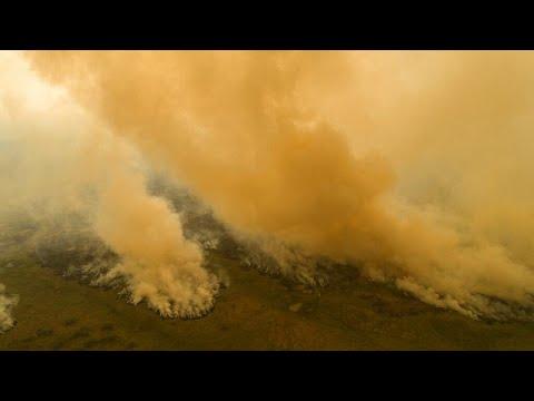 Βραζιλία: Με δραματικούς ρυθμούς η αποψίλωση του Αμαζονίου…