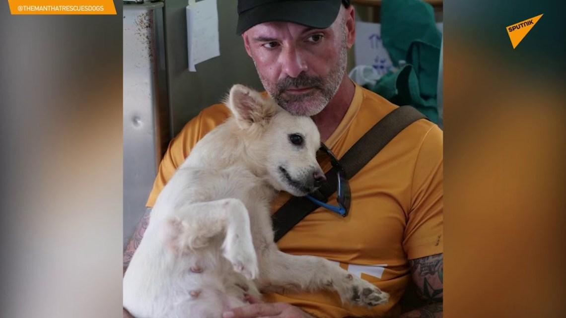 Καταφύγιο στην Ταϊλάνδη δίνει δεύτερη ευκαιρία στη ζωή σε σκύλους με αναπηρία