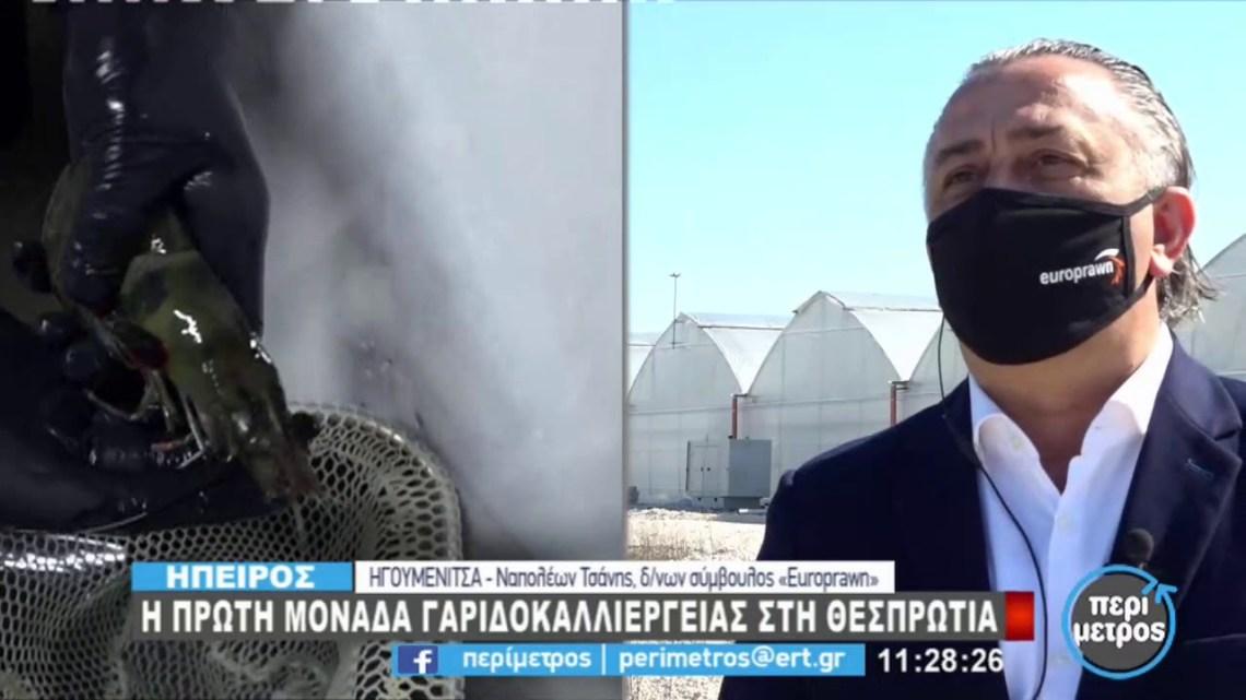 Η πρώτη μονάδα γαριδοκαλλιέργειας στην Θεσπρωτία | 04/03/2021 | ΕΡΤ