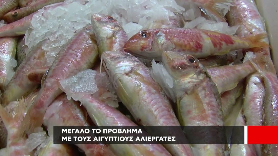 """Στο επίκεντρο τα προβλήματα των αλιέων στο """"Ένα με τη Γη"""""""