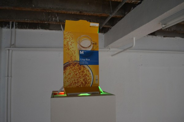 Nathaniel Mellors, In advance of the breakfast of mankind, inside a serial box , 2012.