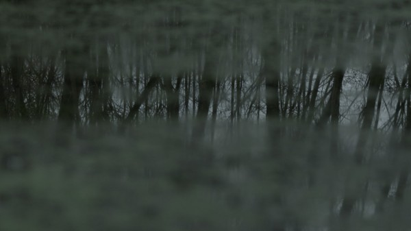 Willie Doherty, Secretion, 2012. HD video still.