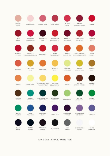 Alison Turnbull, Colour Chart ATX22 (Apple Varieties), 2012