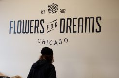 Chicago-based online flower shop Flowers for Dreams gained more than 1 million dollars in revenue since founded in 2012. (Jin Wu/Medill)