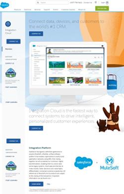 "<a href=""https://www.salesforce.com/products/integration-cloud/overview/"" target=""_blank"">Integration Cloud</a>"