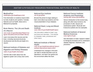Anatomy Resources Trifold Brochure