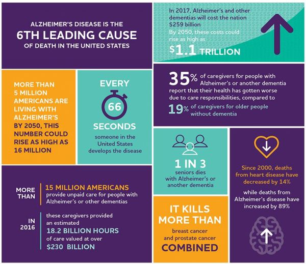 image of facts on Alzheimer's Disease