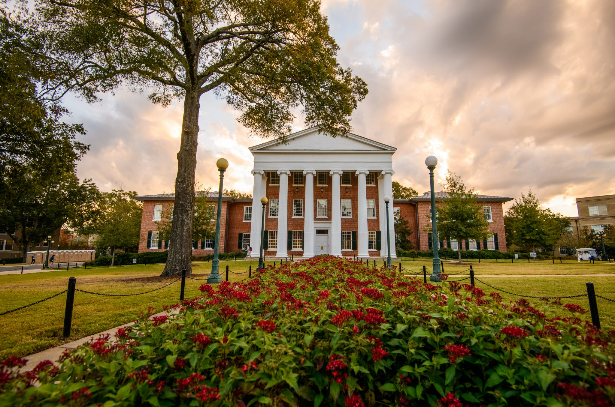 AES-INTL, beasiswa S1 University of Mississippi