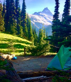 Tips for Camping in Mount Rainier National Park