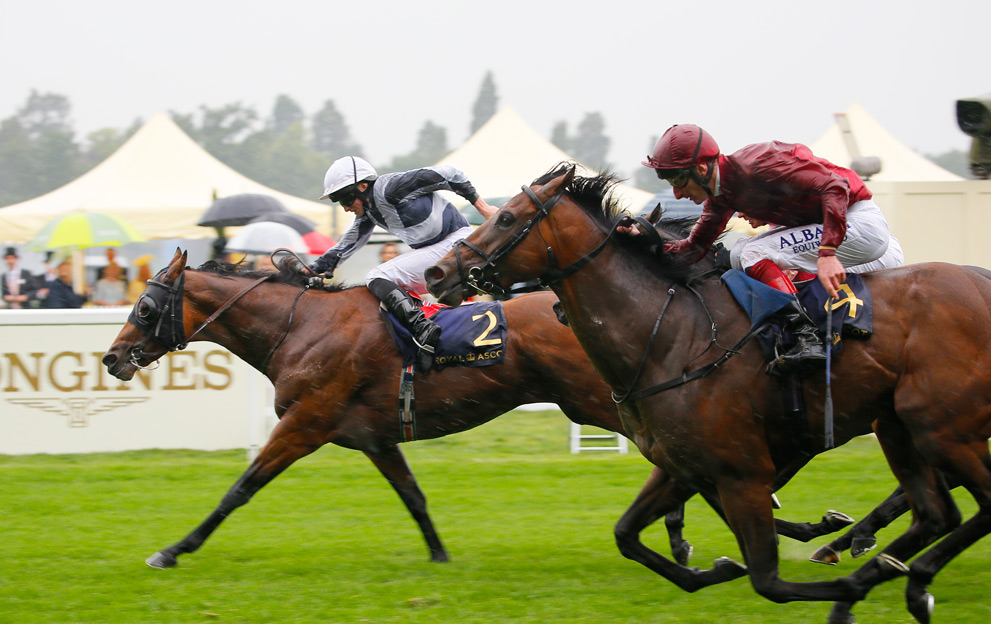 Horse Racing tips: 9 punts to watch on Saturday's Breeders ...