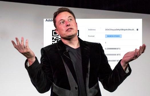 Elon Musk Reveals How Much Bitcoin He Has - PCCEX