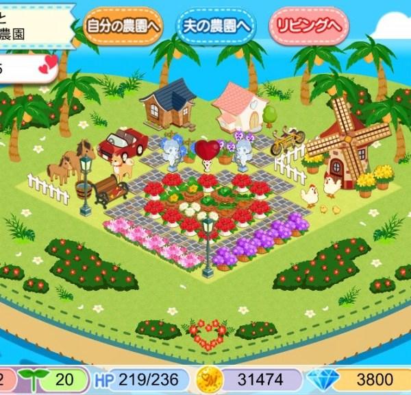 農園婚活9