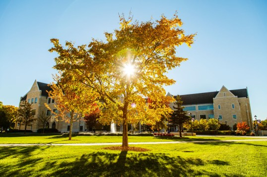 The Lower Quad in Fall.