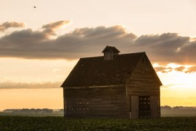 A corn crib stands outside Storm Lake, Iowa. Storm Lake is home to Art Cullen '80 who won a Pulitzer Prize for a series of editorials about a corporate agriculture lawsuit in Iowa's Buena Vista county.