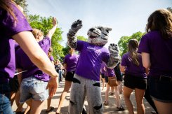 Tommie the mascot gives high fives to seniors during the 2018 March Through the Arches ceremony for graduating seniors on May 18, 2018 in St. Paul.