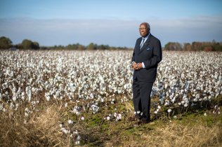 Steve Bullock stands amongst unharvested cotton plants outside of his hometown of Enfield, North Carolina on November 23, 2018. Steve can remember his humble beginnings as a shoeless child, picking the same crop by hand while working on his family's farm. Steve Bullock was photographed for a feature story in St. Thomas Magazine.