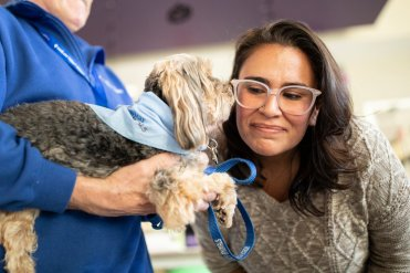 Marketing, Insights and Communications staffer Brenda Canales meets a dog during Dogtoberfest at the create[space] in the Anderson Student Center. The Human Resources department brought North Star Therapy Animals to campus to spend time with St. Thomas employees. Mark Brown/University of St. Thomas