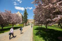 Students pass by the blossoming trees in from of the Arches on the St. Paul campus during a spring afternoon. Liam James Doyle/University of St. Thomas