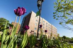 Tommie North Residence Hall sands beyond a bed of flowers on a beautiful sunny spring morning. Mark Brown/University of St. Thomas