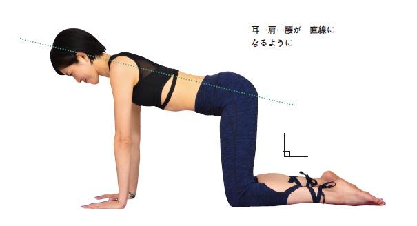 エクササイズ股関節、膝関節は90°に。肩関節の真下に手を置く