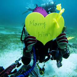 under the sea proposal