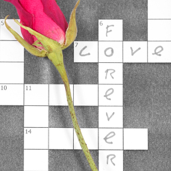 Crossword Proposal