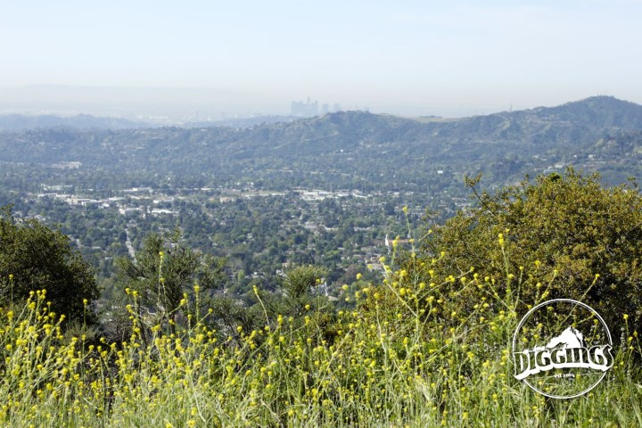 View of Los Angeles from the Angeles National Park.