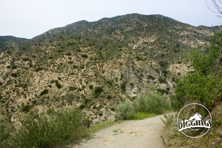 A path into the Angeles National Forest.