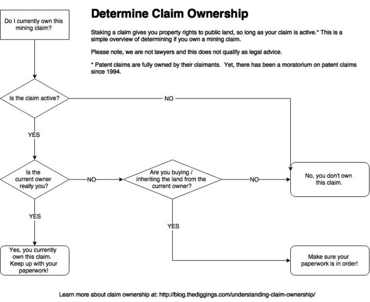 Ownership Flow Chart