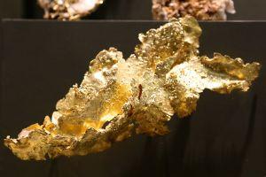 Gold Au Shore mine, Tuolumne County California