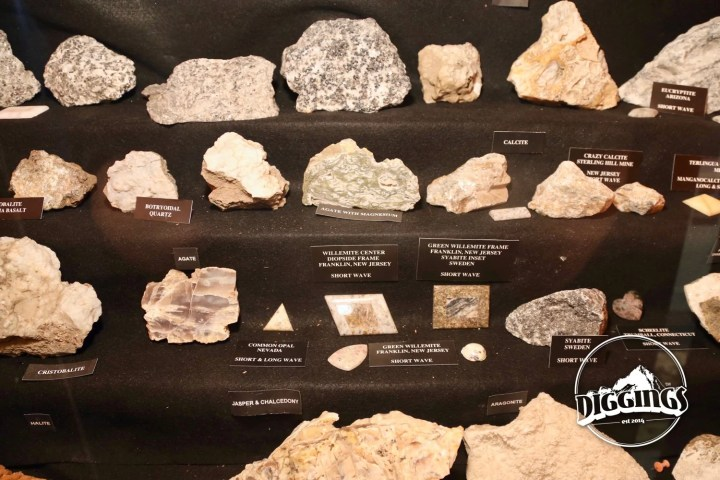 Fluorescent Rocks at the Idaho Museum of Mining & Geology