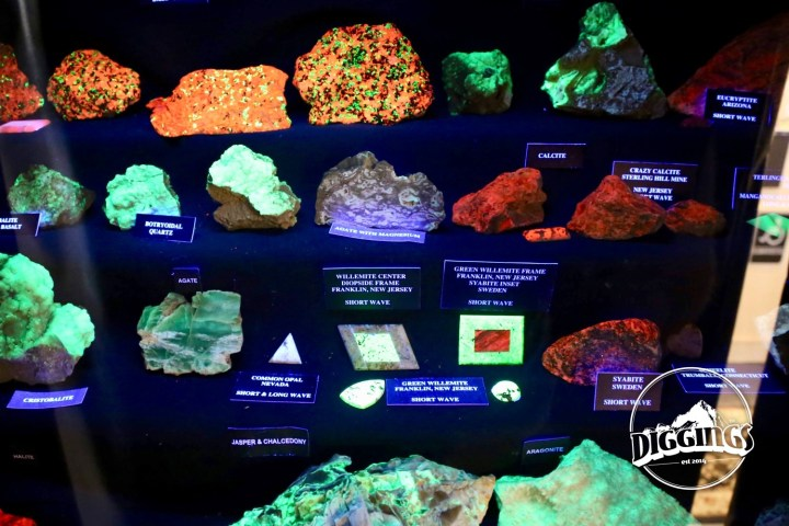 Black Light Fluorescent Rocks at the Idaho Museum of Mining & Geology