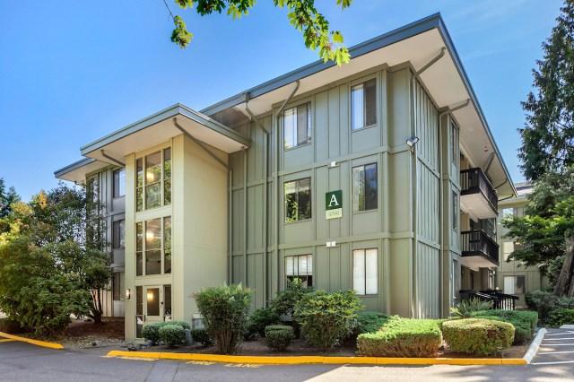 New Standard Equities, West Coast, Los Angeles, San Diego, Seattle, Moreno Valley, Brixton Capital Group, Sklar Kirsh, Walnut Place Apartments Pasadena, Green Leaf Cedar Park, Pacific Northwest