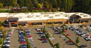 Bellevue, PMF Investments, Pacific Northwest, Kelsey Creek Center, Kizuki Ramen, Shoes and Feet, Walmart, L.A. Fitness, Starbucks, Wells Fargo, Verizon, K-Mart, King County, Lake Hills