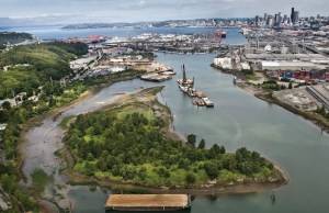 Seattle, EPA, Department of Neighborhoods, Office of Sustainability and Environment, Duwamish Valley Action Plan, Georgetown