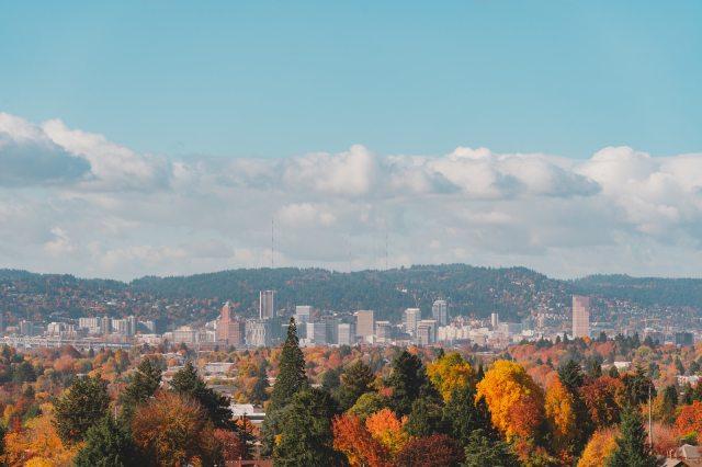 Mecanica Scientific Services, Portland